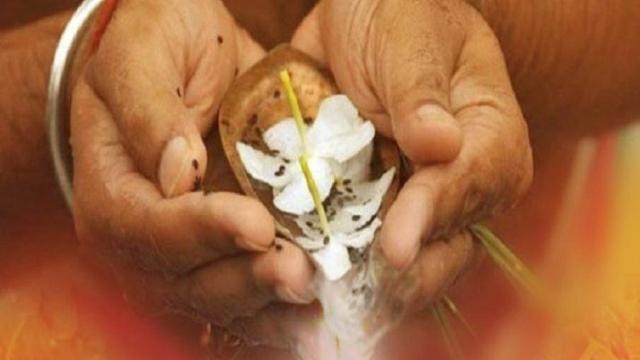 Sarva Pitru Amavasya 6 अक्टूबर को सर्वपितृ अमावस्या, इस दिन करें हर पितृ का श्राद्ध, मांग लें मनचाहा आशीर्वाद