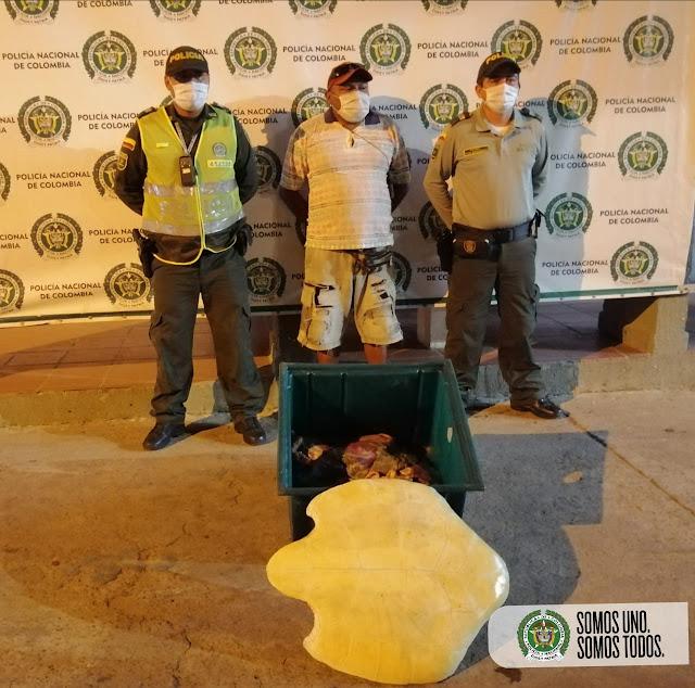 hoyennoticia.com, Lo cogieron vendiendo carne de tortuga en la vía al Cabo de la Vela