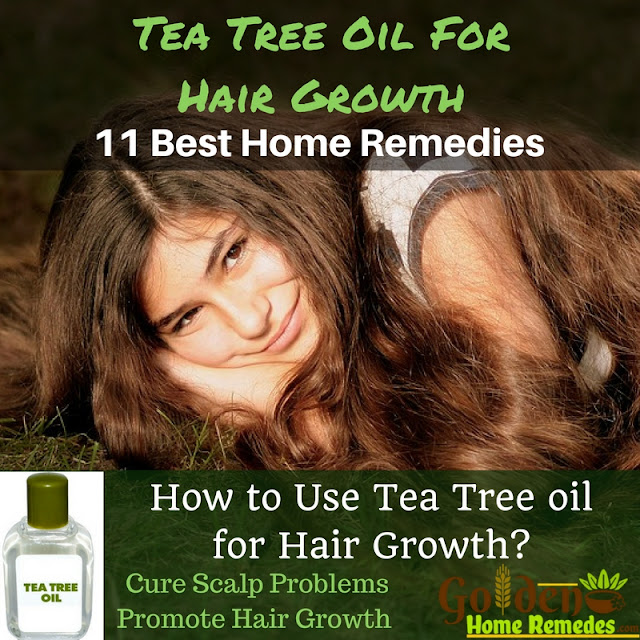Tea Tree Oil For Hair Growth, Tea Tree Oil Hair Growth, Tea Tree Oil For Hair Grow, Tea Tree Oil And Hair Growth, Tea Tree Oil For Hair, Hair-Care-Home-Remedies, Hair-Growth-Home-Remedies, Tea-Tree-Oil-Home-Remedies,