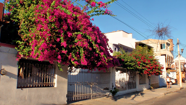 A colourful street in La Crucecita