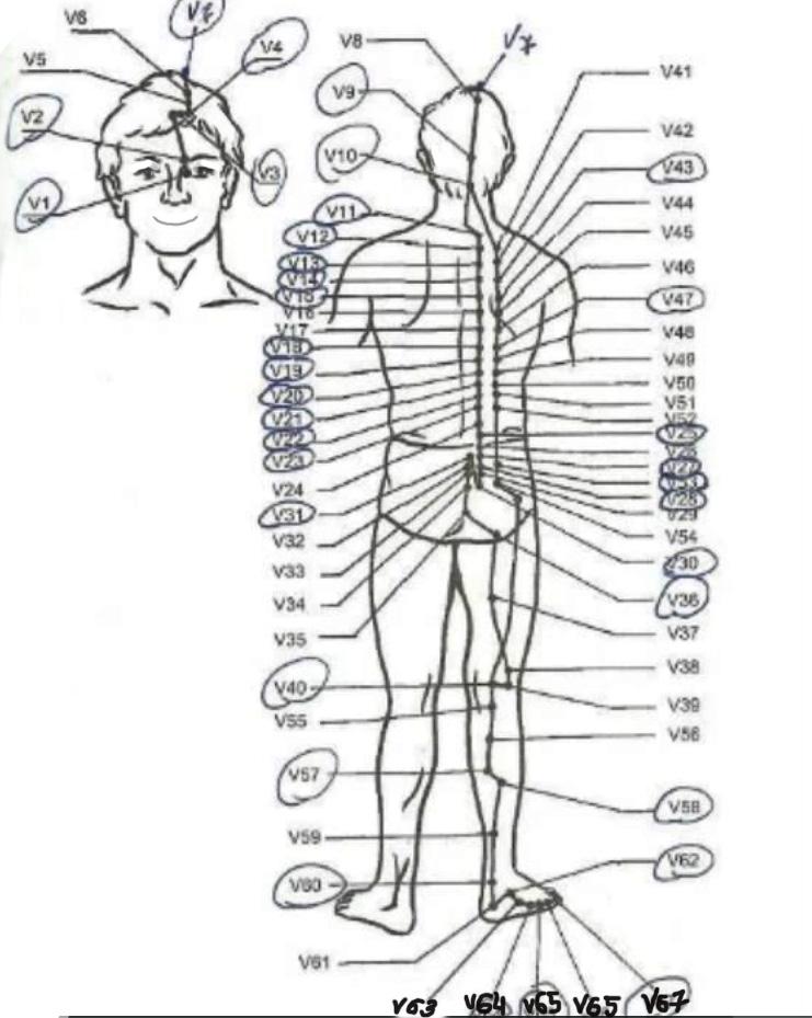 массажные точки против болей в спине точеченый массаж для востановления всего организма
