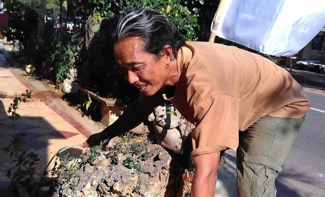Inilah sosok Pengrajin Bonsai yang jenius M. Wahyudi dari Tuban Jawa Timur
