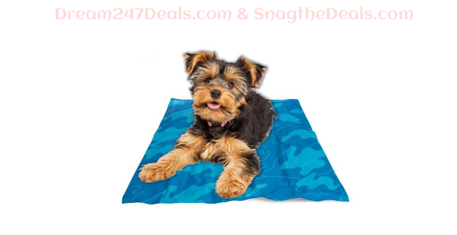 Self-Cooling Gel Pet Mat – Keep Dogs Cool With No Refrigeration