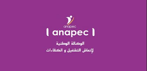 الوكالة الوطنية لإنعاش التشغيل والكفاءات: توظيف 40 حارس أمن وحماية خاص بمدينة طنجة