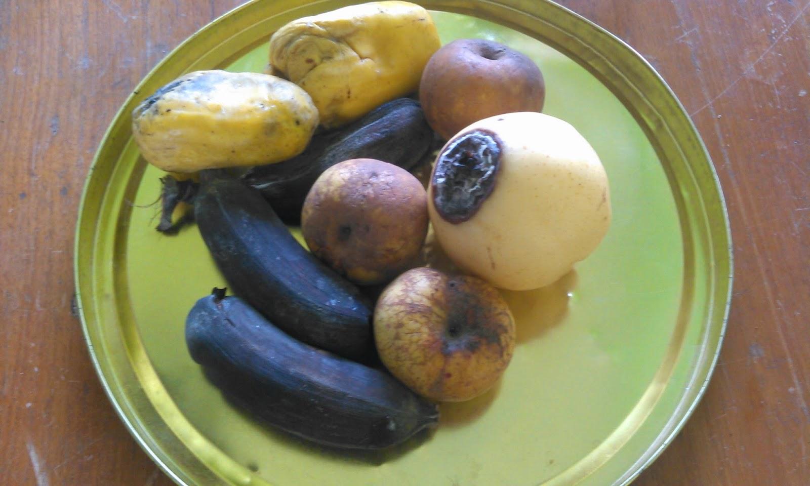 Pemanfaatan Buah-buahan Busuk Sebagai Bahan Pembuat Ragi Cair