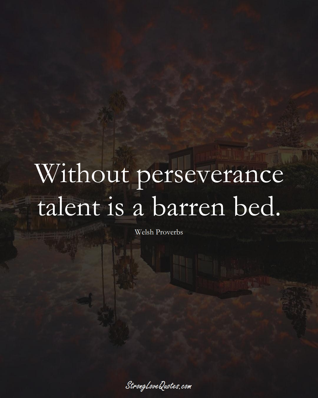 Without perseverance talent is a barren bed. (Welsh Sayings);  #EuropeanSayings