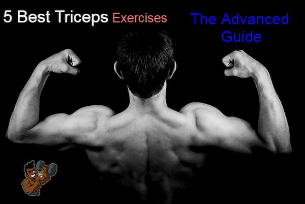 5 Best Triceps Exercises: The Advanced Guide
