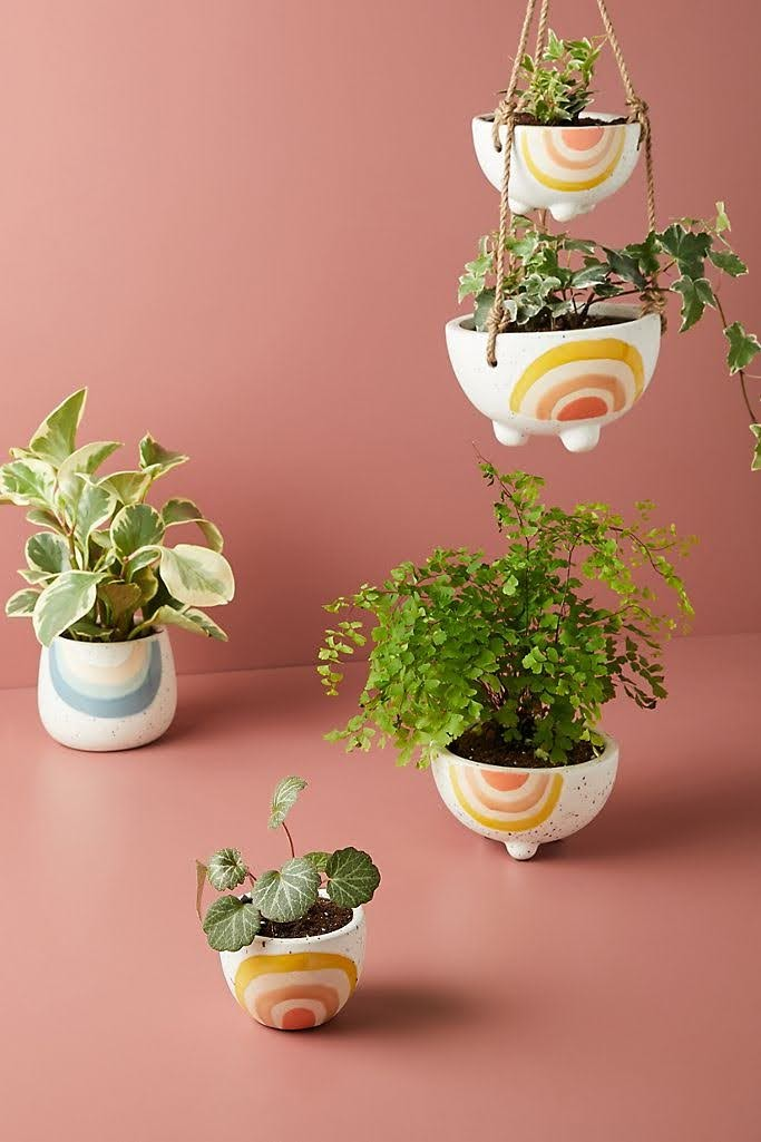 Iris Rainbow Pot | Anthropologie