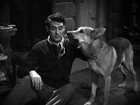 Cary Grant in Wings in the Dark