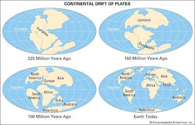 Bukti Teori Continental Drift Wegener