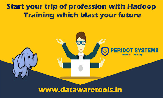 Start your trip of profession with Hadoop Training which blast your future