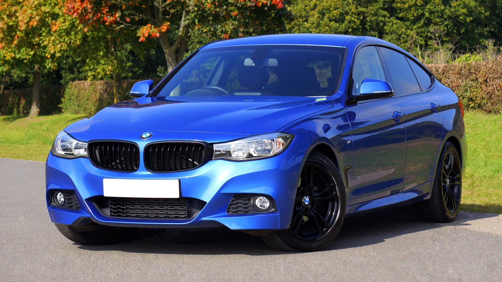 blue-bmw-sedan-near-green-lawn-grass-car-images