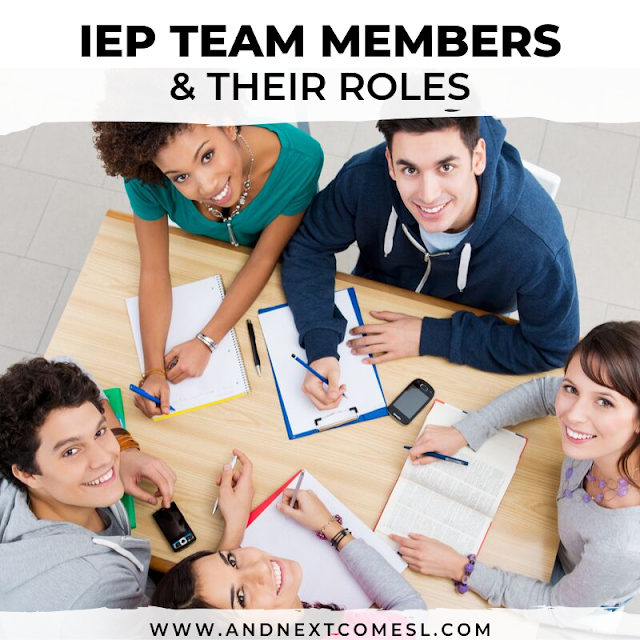 IEP team members and their roles