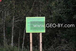 Столбцовский лесхоз Клетищенское лесничество
