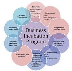 Business Incubation program for startups