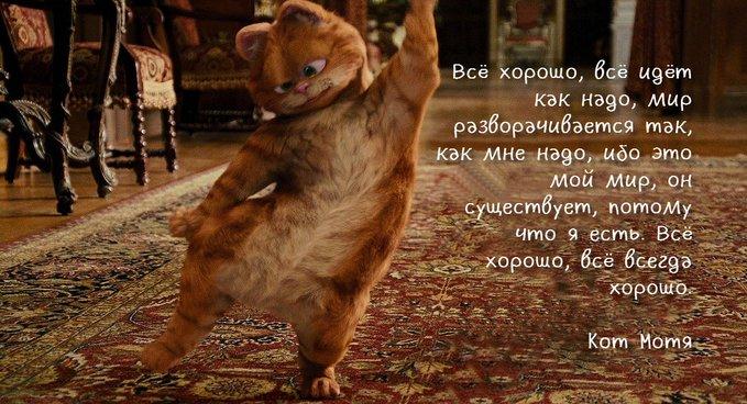 Блог Кота Моти  - Страница 4 E2Ge361XsAAOJfV