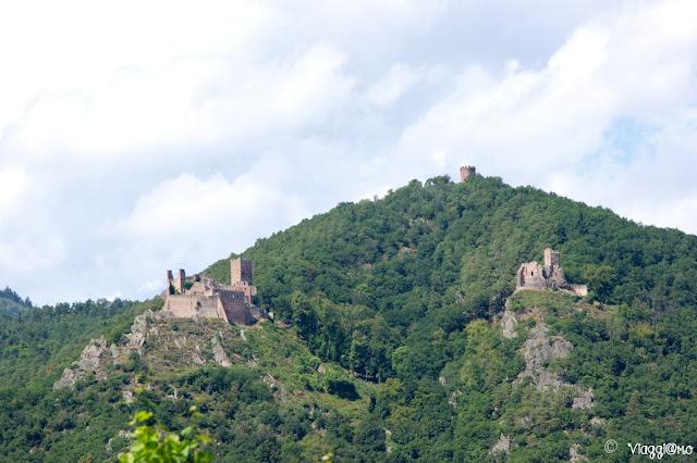 Vista dei Tre Castelli di Ribeauvillé sulla Collina