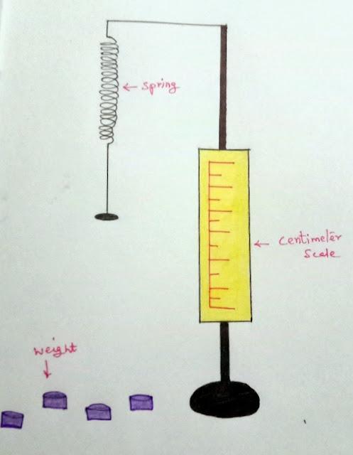Spring System - Hooke's Law