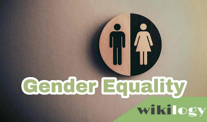 Gender Equality Paragraph