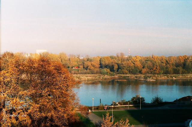 drzewa, jesien, wisła, Warszawa, buw