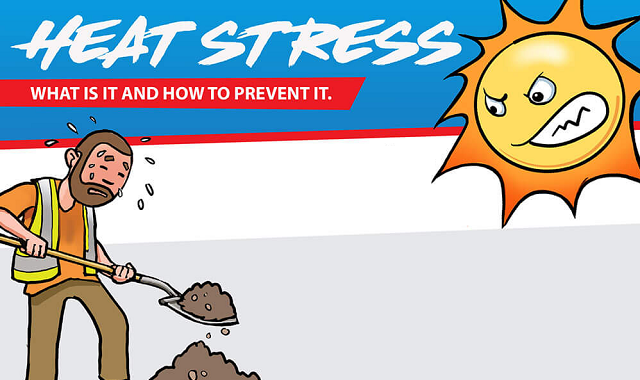 What is Heat Stress and how to overcome it?