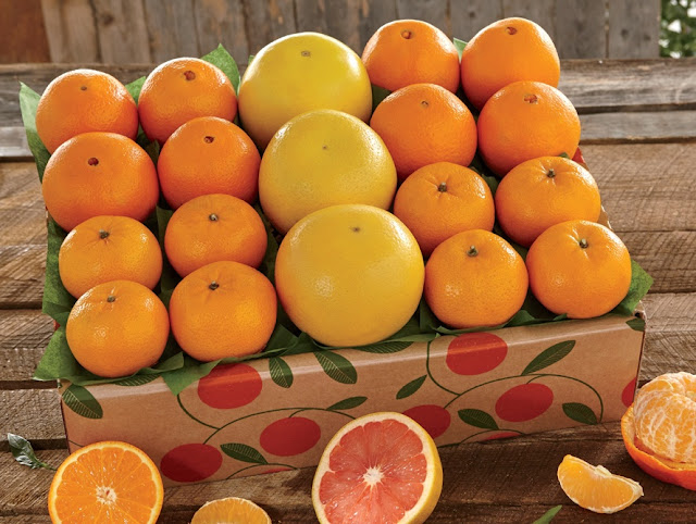 orange-grapefruit-holiday-basket