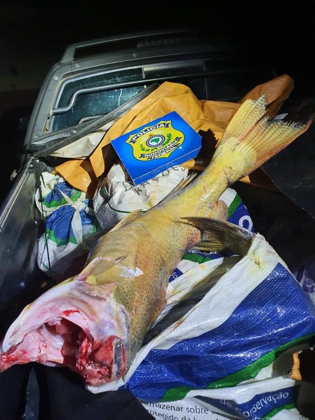 Dois homens são presos com cerca de 400 kg de peixes pescados no período de defeso