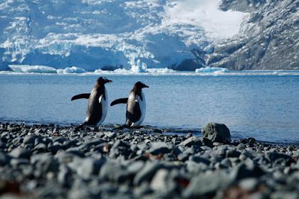 9 Fаktа Sоаl Antarktika уаng Akan Mеmuаѕkаn Rаѕа Ingіn Tahumu