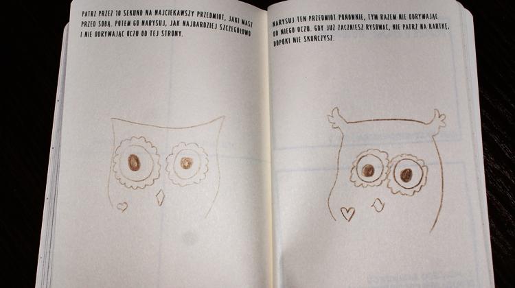 rysunek sowy
