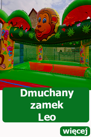 Dmuchany zamek Leo, suchy basen z piłeczkami, Dmuchańce wrocław, atrakcje dla dzieci