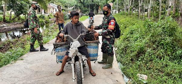 Ketua RT, Babinsa Bantu Warga Langsir Buah Sawit Saat Lihat Kondisi Jalan TMMD Ke-111 Kodim 1207/Ptk