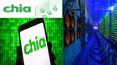 سعر عملة chia الرقمية الصينية الجديدة