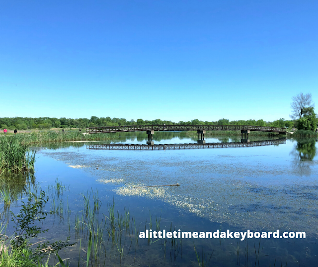 Wandering over the bridge across Mallard Lake in Hanover Park, Illinois