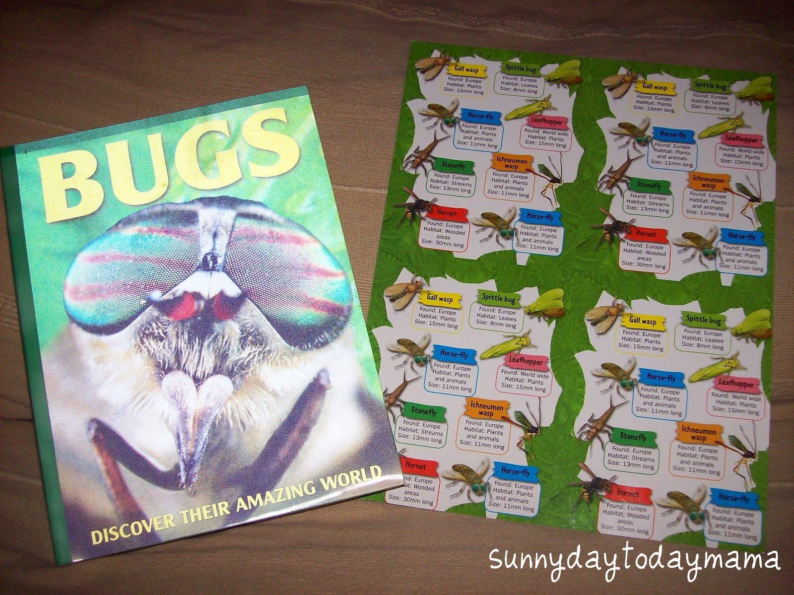 Sunnydaytodaymama A Homemade Nature Study Kit And An I Spy Wild Flowers Giveaway