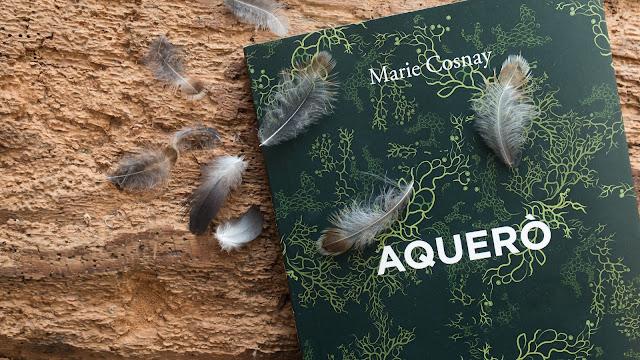 Aquero, Marie Cosnay, éditions de l'Ogre_Lou Darsan