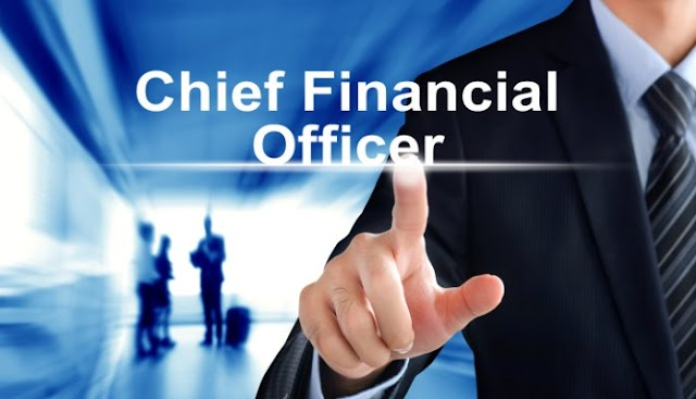 Chief Financial Officer role in Company Success