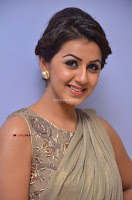 Nikki Galrani in Saree 058.JPG