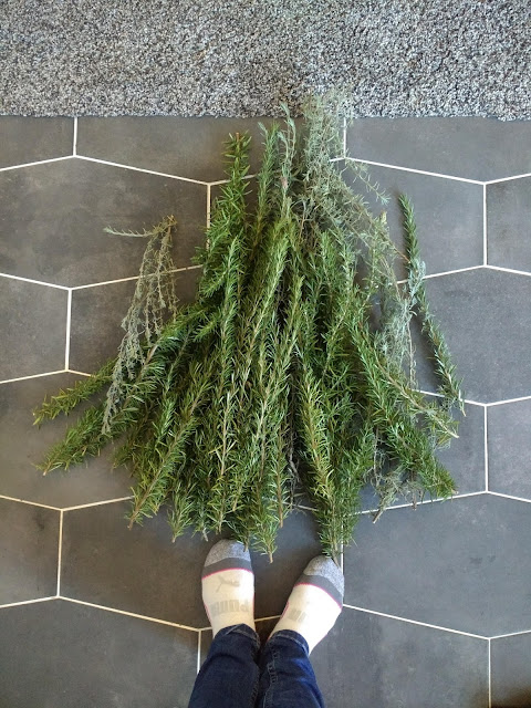 natural greenery for christmas wreaths