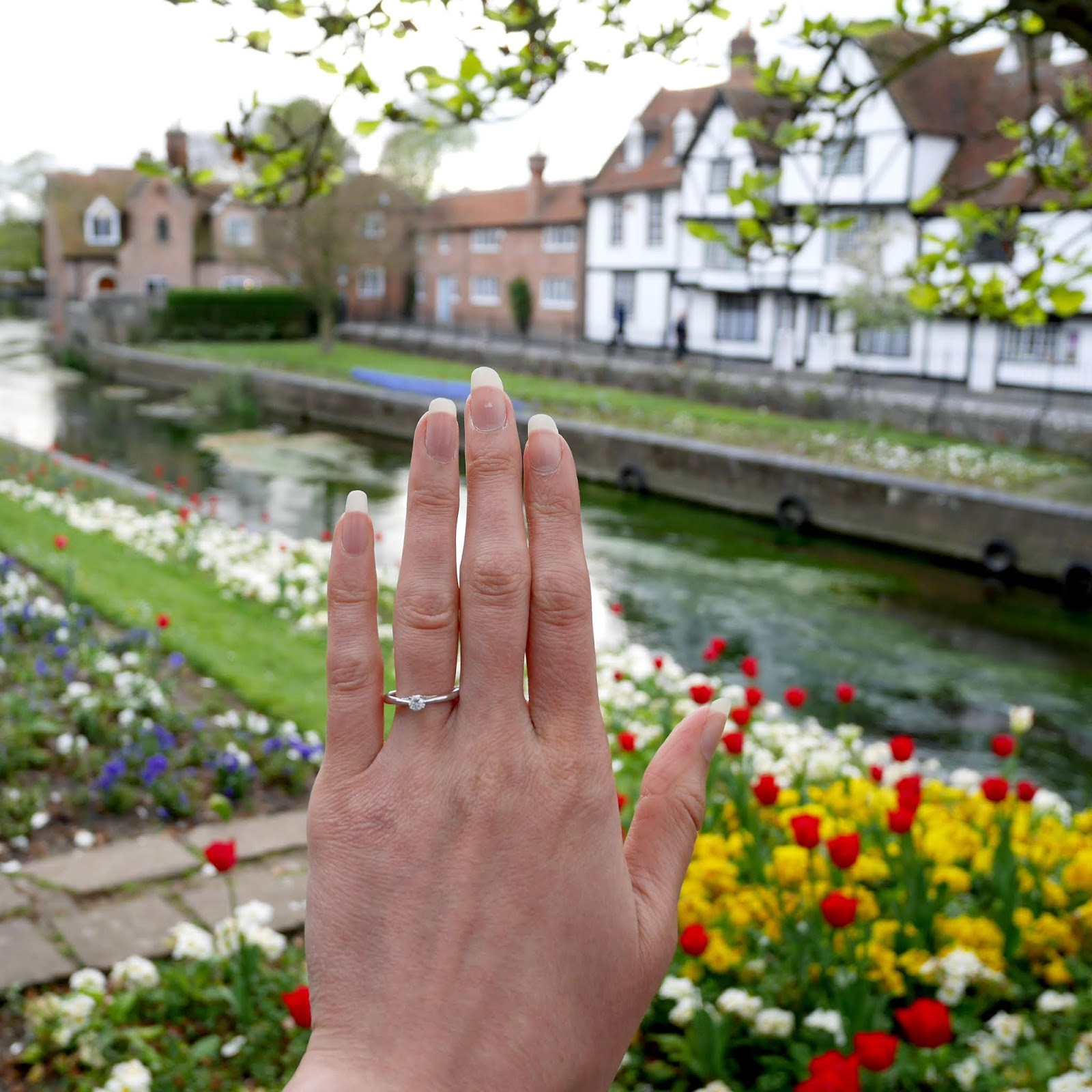 A close up of my engagement ring in Westgate Gardens, Canterbury