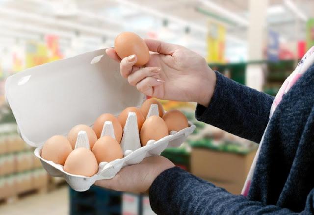 grua duke vëzhguar një vezë