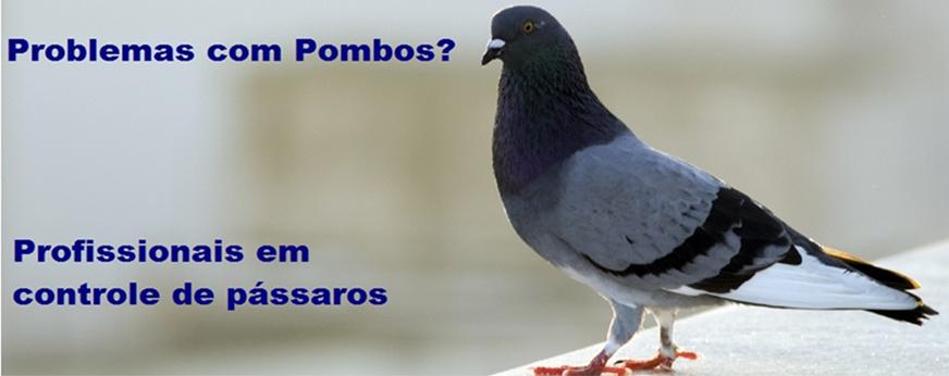 Limpeza de Caixas D'agua para predios Vila Sao Jose (Ipiranga)