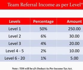 Youtag Level Income
