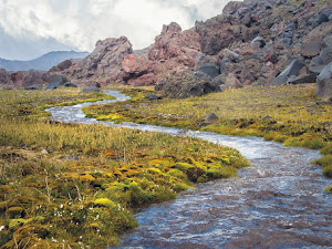 Tipos de afluentes: brook, creek, stream, river