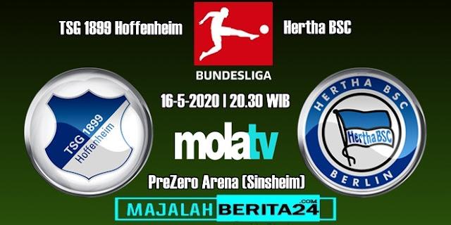 Prediksi TSG Hoffenheim vs Hertha BSC