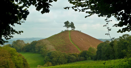 The Colpexies of Colmers Hill