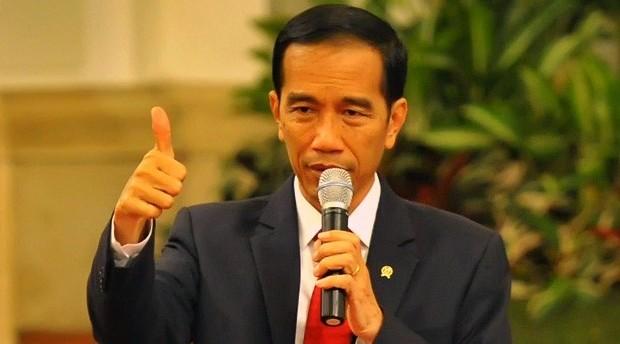 Demokrat Sebut Jokowi Bisa Dilengserkan Soal Tuduhan Aktor Politik