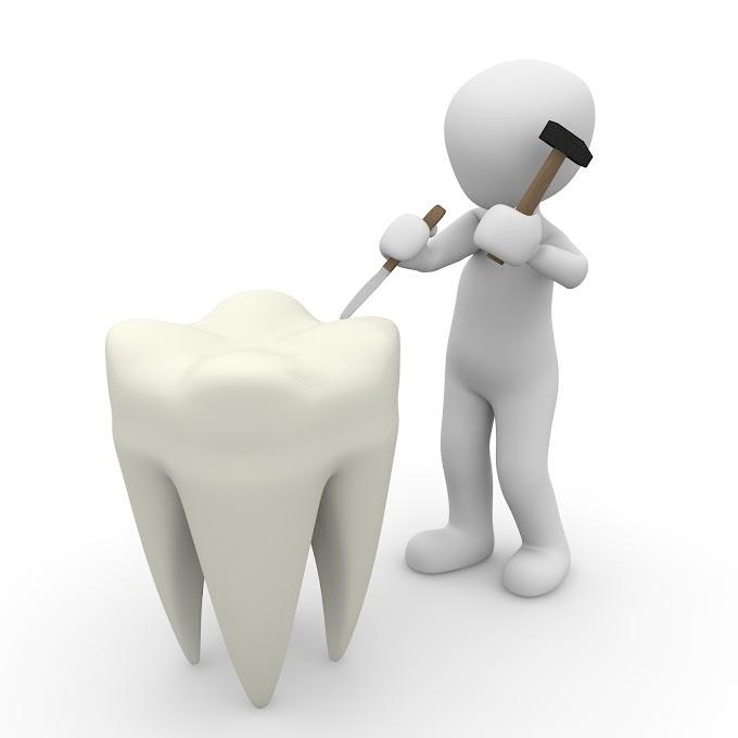 Best Dentist in New Jersey