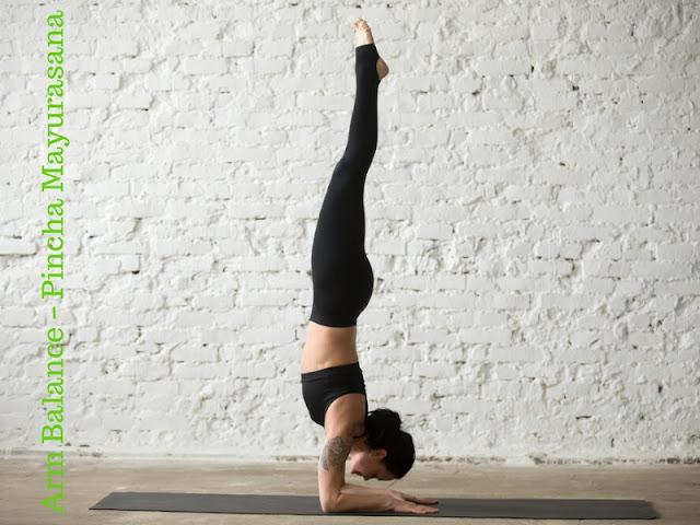 Arm Balance – Pincha Mayurasana
