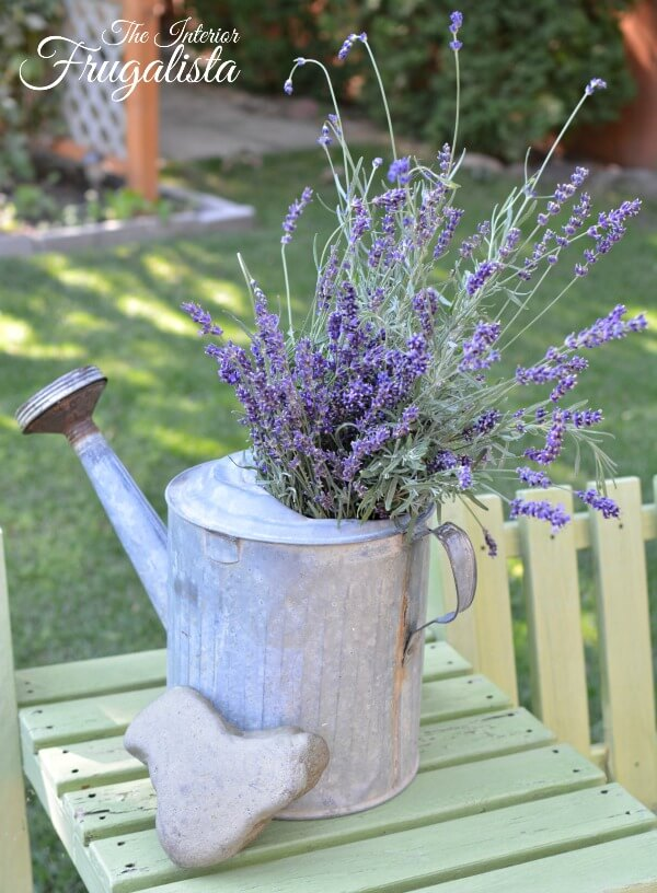 Helpful tips on how to harvest and dry fresh lavender from your flower garden along with some creative ideas on how to use dried lavender.