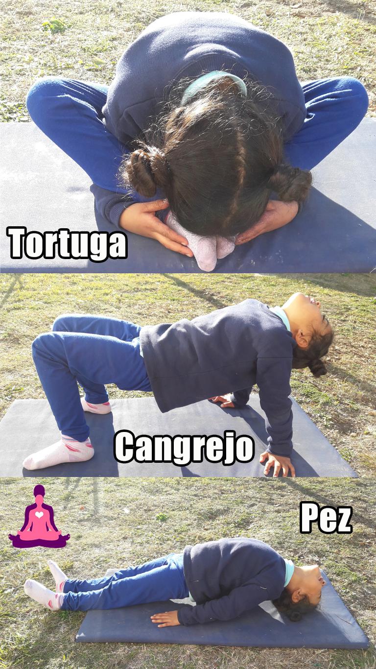 yoga respiración y concentración